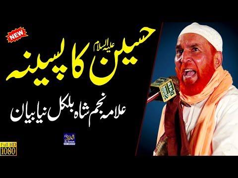Najam Shah New Bayan || Mola Hussain ka Pasina || Latest Bayan || New Punjabi Speech