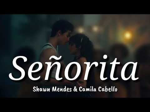 Shawn Mendes & Camila Cabello - Señorita Lyrics   Terjemahan Indonesia